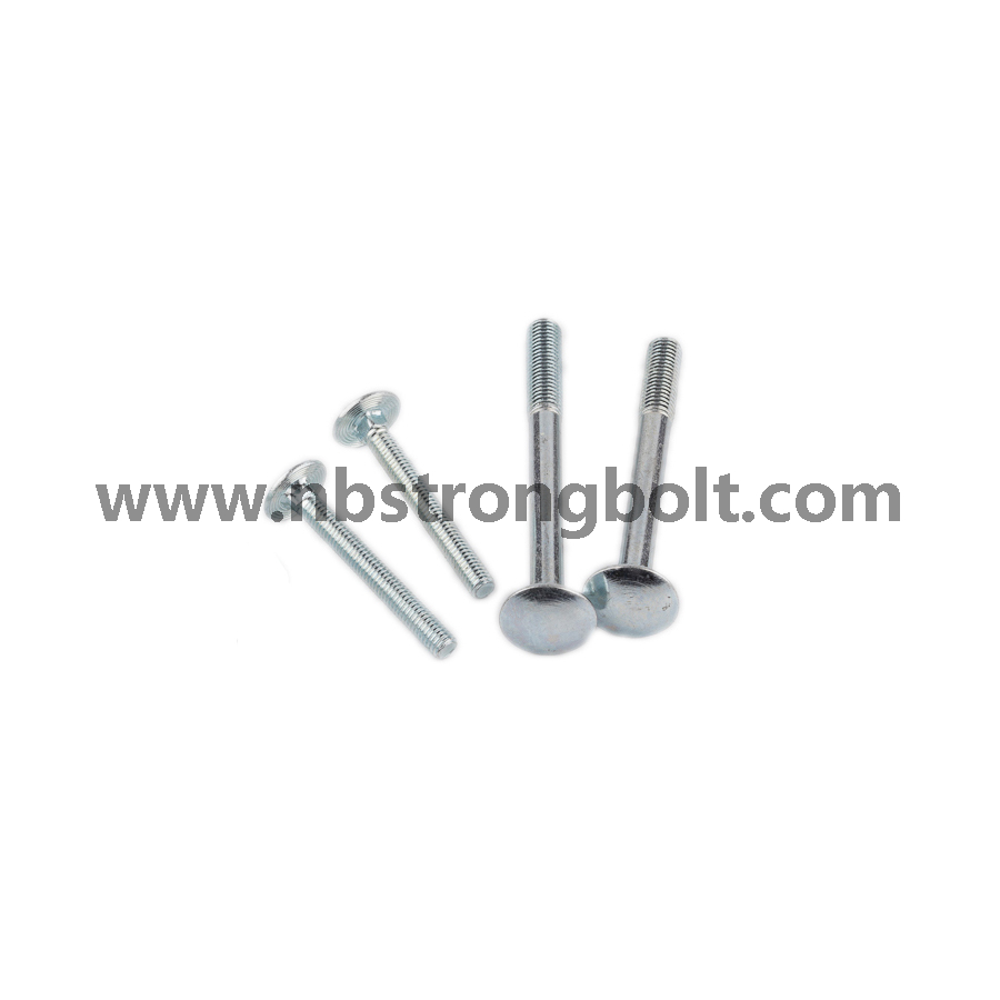 Mushroom Head Square Neck Bolt DIN603 Cl. 4.8/carriage bolt DIN603,China carriage bolt factory,China carriage bolt manufacturer