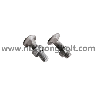 Carriage Bolt / Hex Nut With HDG